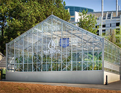 Water Hub Greenhouse